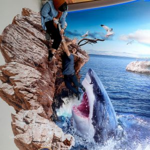 shark 3d sticker 3d painting