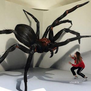 the spider 3d painting by sergio odeith